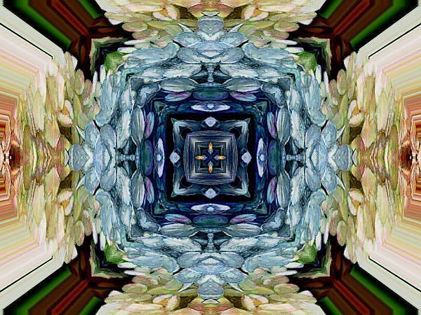 Art: Hydrangea Kaliedoscope by Artist Carolyn Schiffhouer
