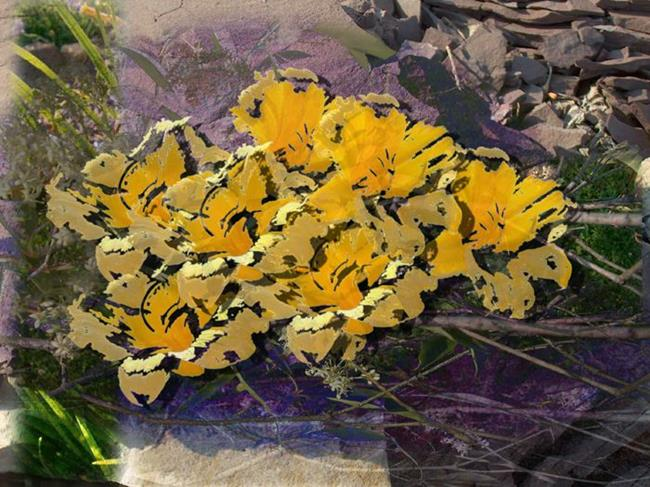 Art: Flower Day in June by Artist Carolyn Schiffhouer