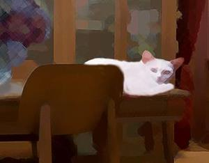 Detail Image for art Cat on the Coffee House Table