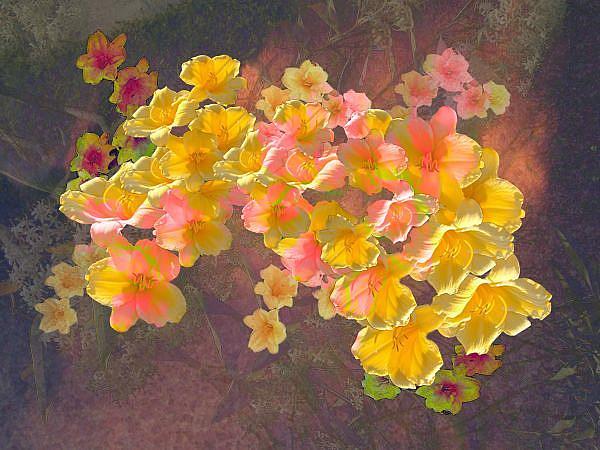 Art: Floating Flowers (Flora & Fauna Show) by Artist Carolyn Schiffhouer