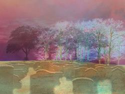 Art: Perchance to Dream by Artist Carolyn Schiffhouer