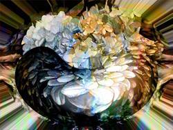 Art: Hydrangea Bowl by Artist Carolyn Schiffhouer