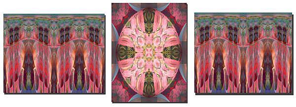 Art: Abbey's Triptych by Artist Carolyn Schiffhouer