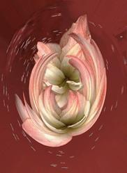 Art: Birth of Spring by Artist Carolyn Schiffhouer