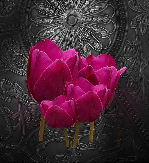 Art: Tulips on Silver by Artist Carolyn Schiffhouer