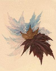Art: Leaf Illusion by Artist Carolyn Schiffhouer