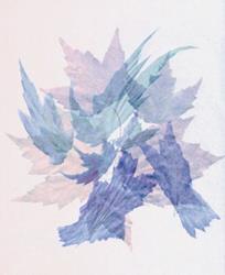 Art: leaf dance by Artist Carolyn Schiffhouer