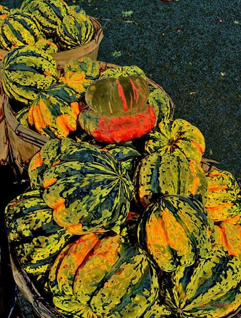 Art: Acorn Squash by Artist Deanne Flouton