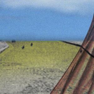 Detail Image for art Flutter