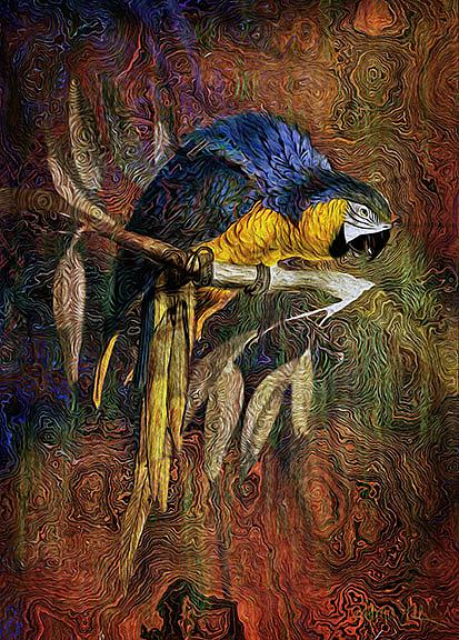 Art: Blue Macaw by Artist Alma Lee