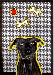 Art: Gus I by Artist Jenny Doss
