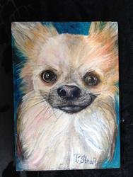 Art: Jackson, A Long-Haired Chihuahua Sweetheart by Artist Penny StewArt