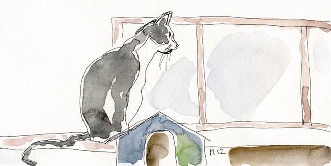 Art: CatSketch03_800.jpg by Artist Gabriele Maurus