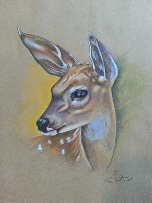Art: Fawn by Artist Richard R. Snyder
