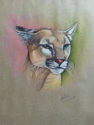 Art: Cougar by Artist Richard R. Snyder