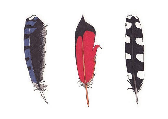 Art: Feathers by Artist Amanda Makepeace