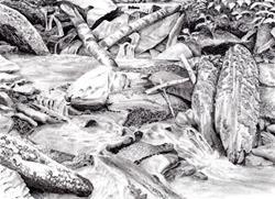 Art: Mountain Stream Pool by Artist Robin Cruz McGee