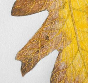 Detail Image for art Holding On