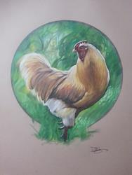 Art: rooster.jpg by Artist Richard R. Snyder