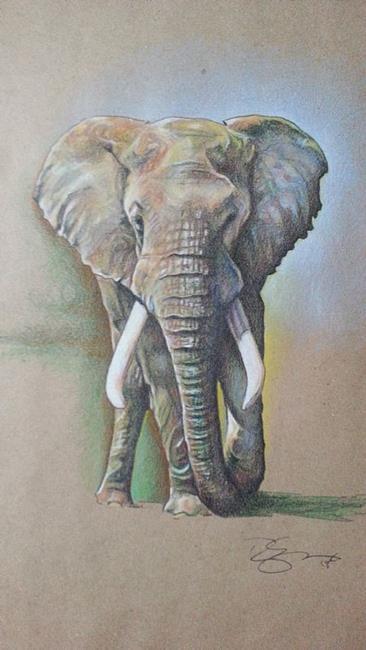 Art: African Bull by Artist Richard R. Snyder