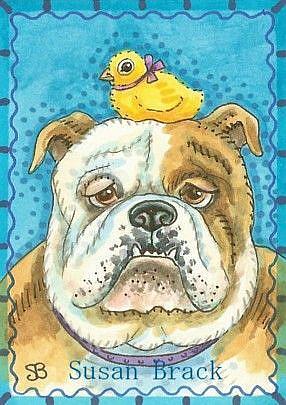 Art: BULLDOG AND CHICK by Artist Susan Brack