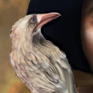 Detail Image for art White Raven