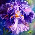 Art: IRIS ABSTRACT II by Artist Marcia Baldwin