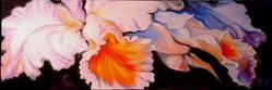 Art: ORCHID by Artist Marcia Baldwin