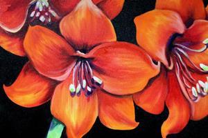 Detail Image for art FLAME II AMARYLLIS