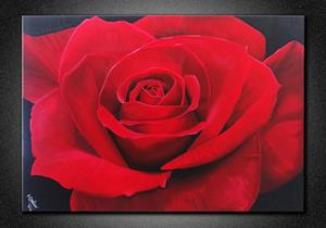 Detail Image for art RED ROSE