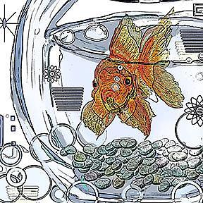 Detail Image for art I am Beggin' You: Goldfish in a bowl