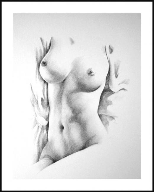 Art: Female Torso February-04 by Artist David Mott