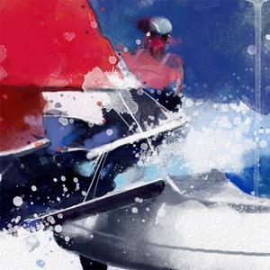 Detail Image for art agostino in regata