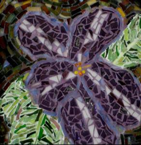 Detail Image for art Varigated African Violet (sold)