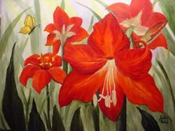 Art: Amaryllis Red  by Artist Barbara Haviland