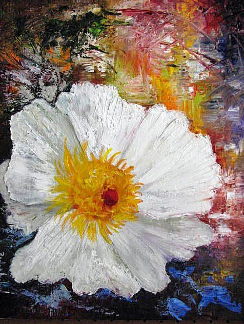 Art: Abstract White Poppy by Artist Barbara Haviland