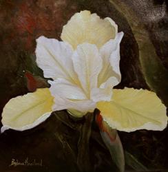 Art: One Yellow Iris by Artist Barbara Haviland