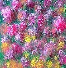 Art: Tulips by Artist KiniArt