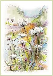 Art: Queen Anne's Lace by Artist Patricia  Lee Christensen
