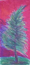 Art: Fir Tree  by Artist Kim Wyatt