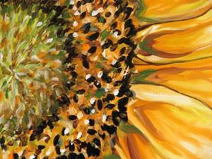 Detail Image for art SUNFLOWER STARBURST