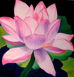 Art: Pink Waterlily by Artist Marcia Baldwin