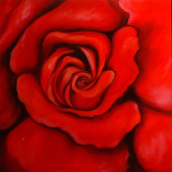 Art: Red Rose II by Artist Marcia Baldwin