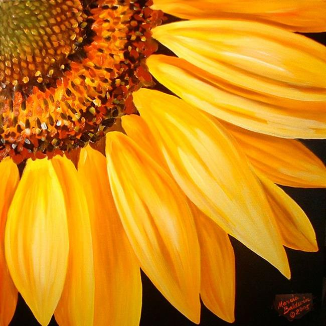 Sunflower No.9 - by Marcia Baldwin from FOTM Sunflowers ...
