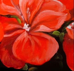Detail Image for art Geranium Petite