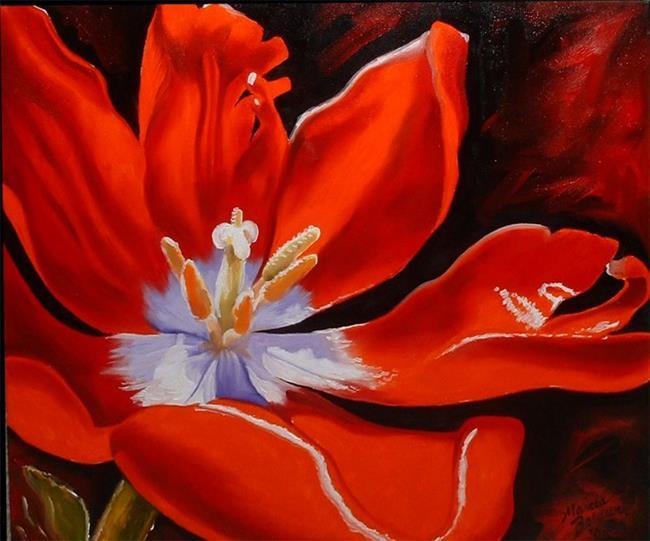 Art: Red Poppy Shine by Artist Marcia Baldwin