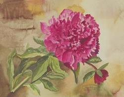 Art: Mom's Peony by Artist Carol Thompson