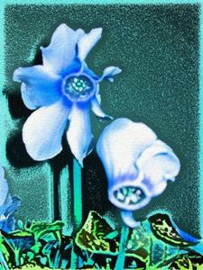 Detail Image for art Cyclamen Blues