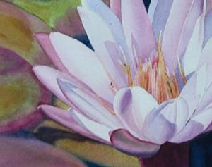 Detail Image for art Pink Water Lily