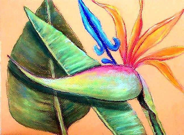 Art: Bird of Paradise by Artist Ulrike 'Ricky' Martin